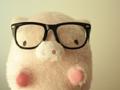 关于12生肖猪的来历